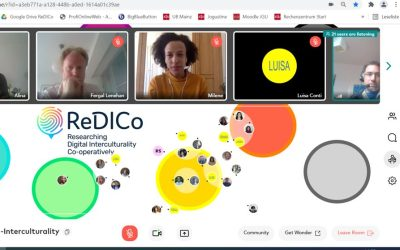 A Review of two ReDICo Conferences